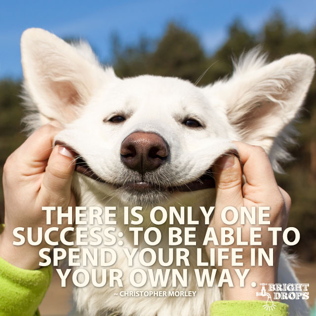 """There is only one success: to be able to spend your life in your own way."" ~Christopher Morley"