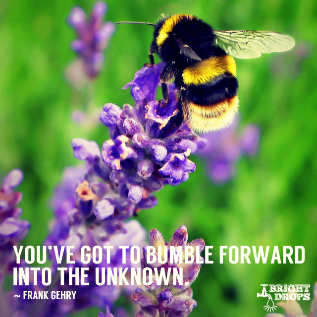 """You`ve got to bumble forward into the unknown."" ~Frank Gehry"