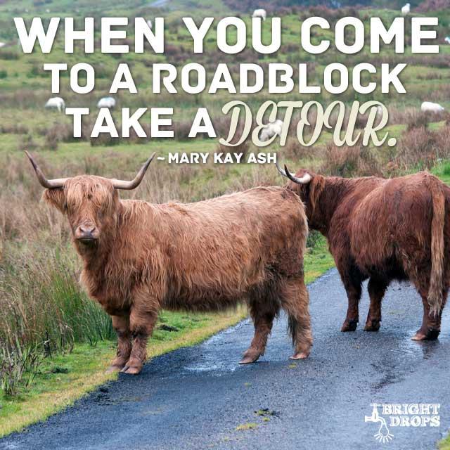 """""""When you come to a roadblock, take a detour."""" ~Mary Kay Ash"""