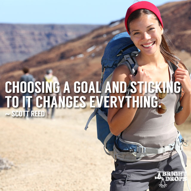 """Choosing a goal and sticking to it changes everything."" ~Scott Reed"