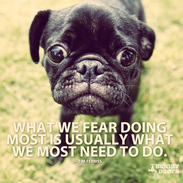 """What we fear doing most is usually what we most need to do. ~Tim Ferriss"""