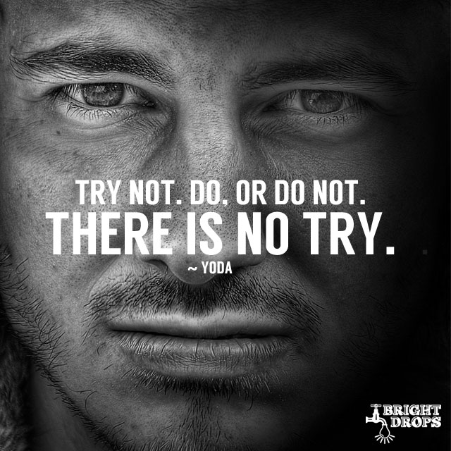 """""""Try not. Do, or do not. There is no try."""" ~Yoda"""