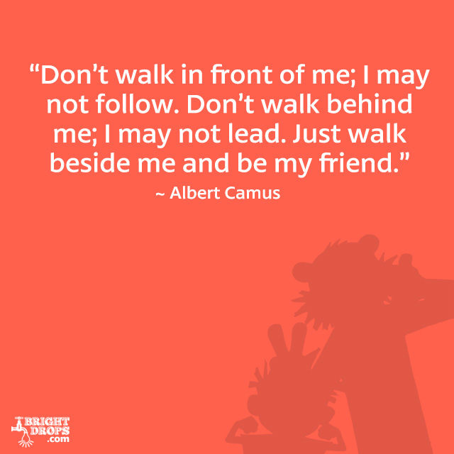"""Don't walk in front of me; I may not follow. Don't walk behind me; I may not lead. Just walk beside me and be my friend."" ~ Albert Camus"