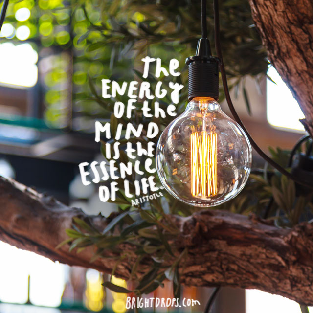 """The energy of the mind is the essence of life."" ~ Aristotle"
