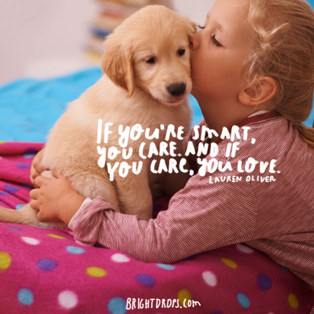 """If you're smart, you care. And if you care, you love."" ~ Lauren Oliver"