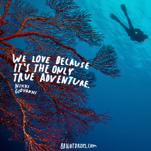 """We love because it's the only true adventure."" ~ Nikki Giovanni"