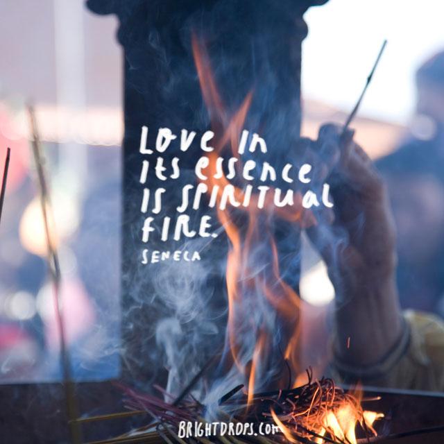 """Love in its essence is spiritual fire."" ~ Seneca"