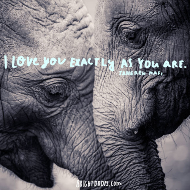"""I love you exactly as you are."" ~ Tahereh Mafi"