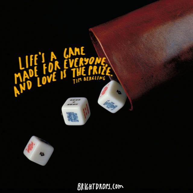 """Life's a game made for everyone, and love is the prize."" ~ Tim Bergling"