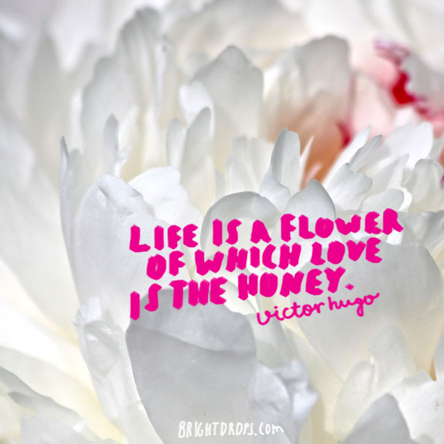 """Life is a flower of which love is the honey."" ~ Victor Hugo"