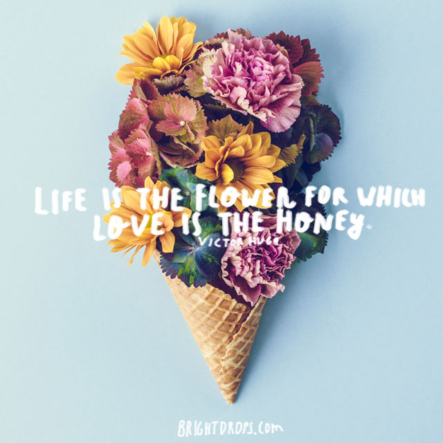 """Life is the flower for which love is the honey."" ~ Victor Hugo"