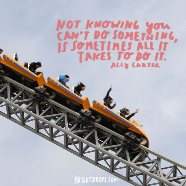 """Not knowing you can't do something, is sometimes all it takes to do it."" ~ Ally Carter"
