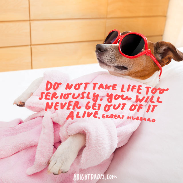 """""""Do not take life too seriously, you will never get out of it alive."""" - Elbert Hubbard"""