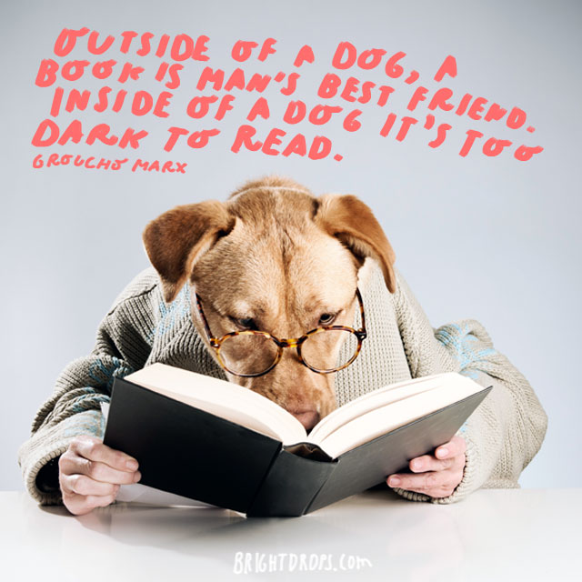 """Outside of a dog, a book is man's best friend. Inside of a dog it's too dark to read."" - Groucho Marx"