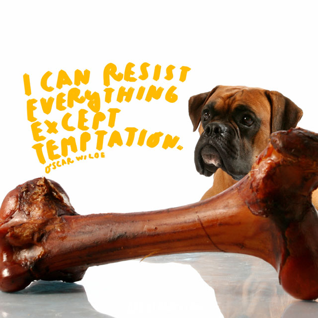"""""""I can resist everything except temptation."""" - Oscar Wilde"""
