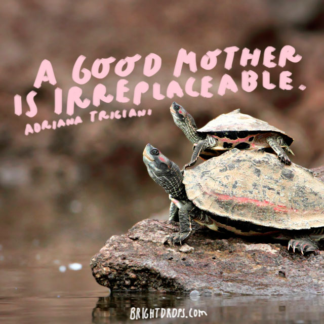 A good mother is irreplaceable. - Adriana Trigiani