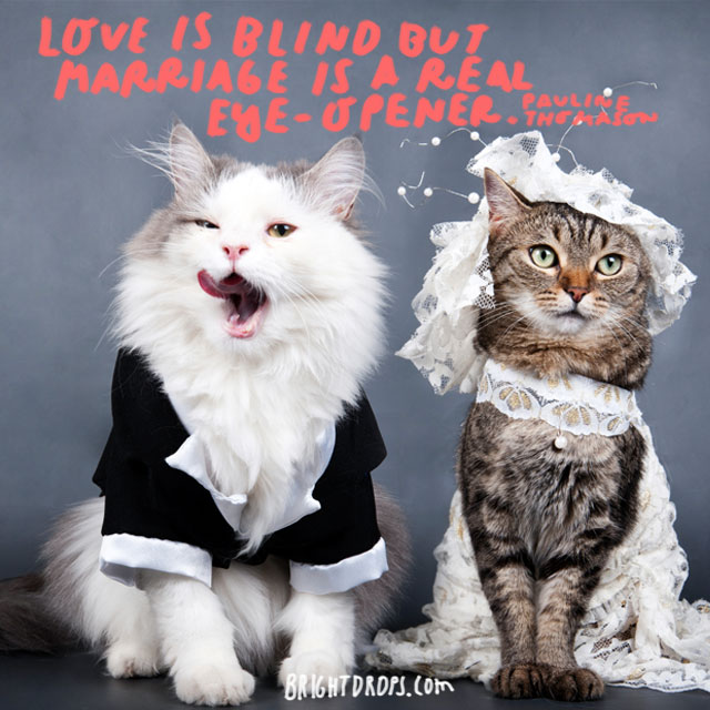 """""""Love is blind but marriage is a real eye-opener."""" - Pauline Thomason"""