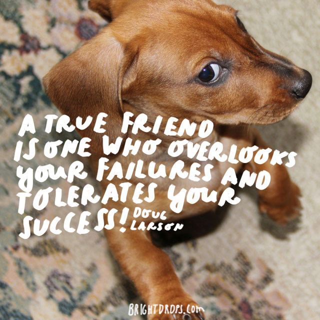"""A true friend is one who overlooks your failures and tolerates your success!"" - Doug Larson"