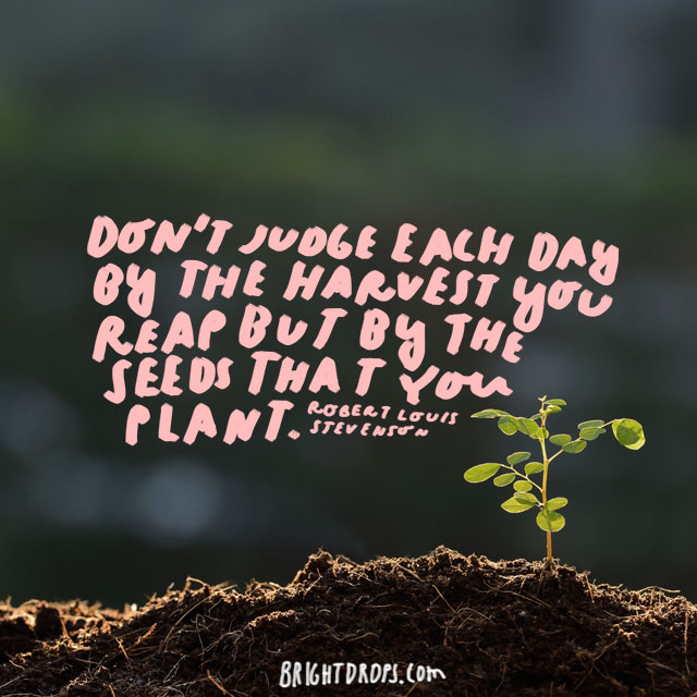 """Don't judge each day by the harvest you reap but by the seeds that you plant."" - Robert Louis Stevenson"