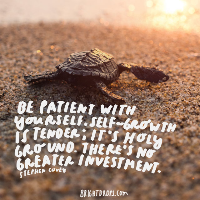 """""""Be patient with yourself. Self-growth is tender; it's holy ground. There's no greater investment.""""  - Stephen Covey"""