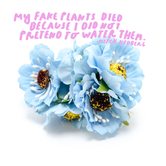 """My fake plants died because I did not pretend to water them."" - Mitch Hedberg"