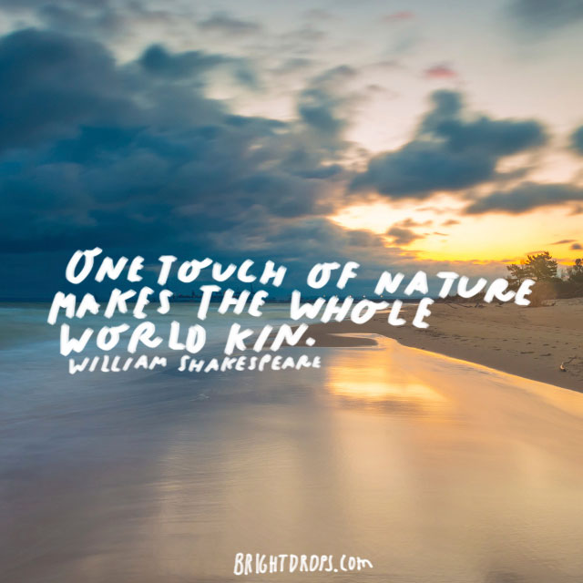 """One touch of nature makes the whole world kin."" - William Shakespeare"