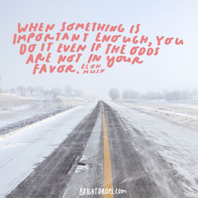 """""""When something is important enough, you do it even if the odds are not in your favor."""" - Elon Musk"""