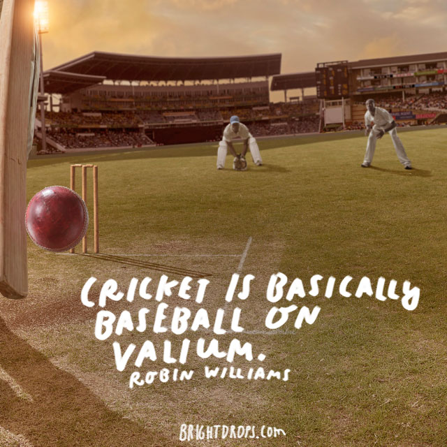 """Cricket is basically baseball on valium."" - Robin Williams"