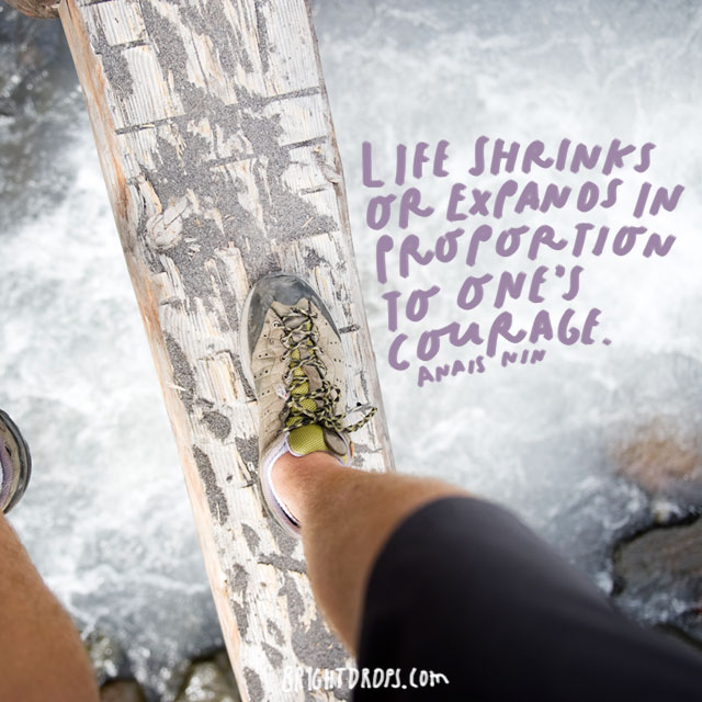 """Life shrinks or expands in proportion to one's courage."" - Anais Nin"