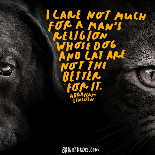 """I care not much for a man's religion whose dog and cat are not the better for it."" - Abraham Lincoln"