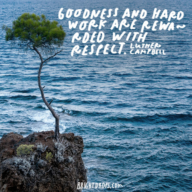 """""""Goodness and hard work are rewarded with respect."""" -  Luther Campbell"""