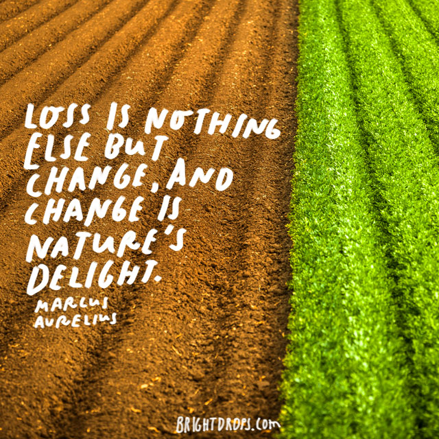 """Loss is nothing else but change, and change is Nature's delight."" - Marcus Arelius"