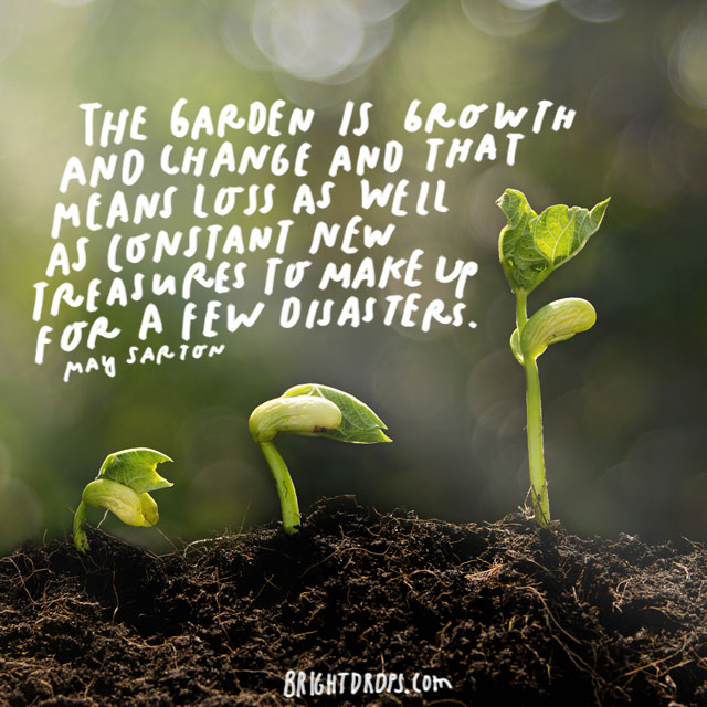 """The garden is growth and change and that means loss as well as constant new treasures to make up for a few disasters."" - May Sarton"