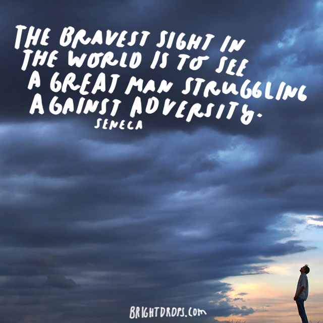 """The bravest sight in the world is to see a great man struggling against adversity."" - Seneca"