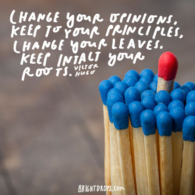 """Change your opinions, keep to your principles; change your leaves, keep intact your roots."" - Victor Hugo"