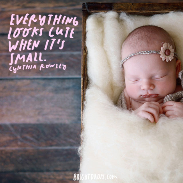 """Everything looks cute when it's small."" – Cynthia Rawley"