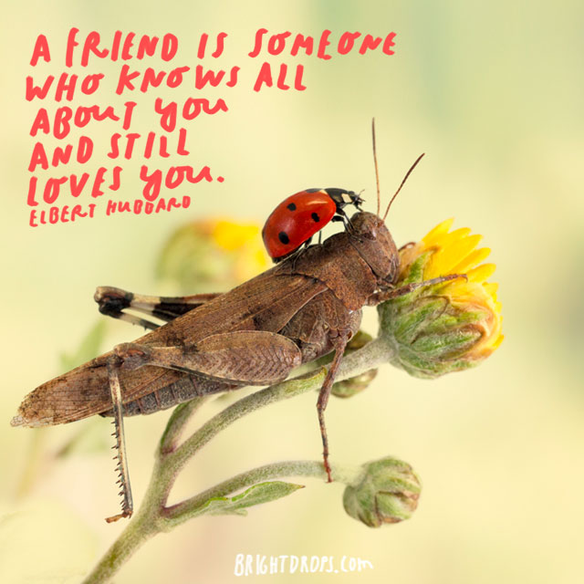 "A friend is someone who knows all about you and still loves you."" – Elbert Hubbard"