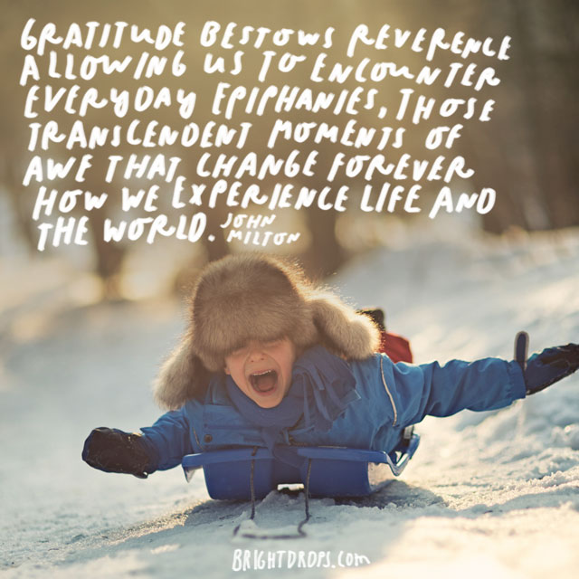 """""""Gratitude bestows reverence, allowing us to encounter everyday epiphanies, those transcendent moments of awe that change forever how we experience life and the world."""" - John Milton"""