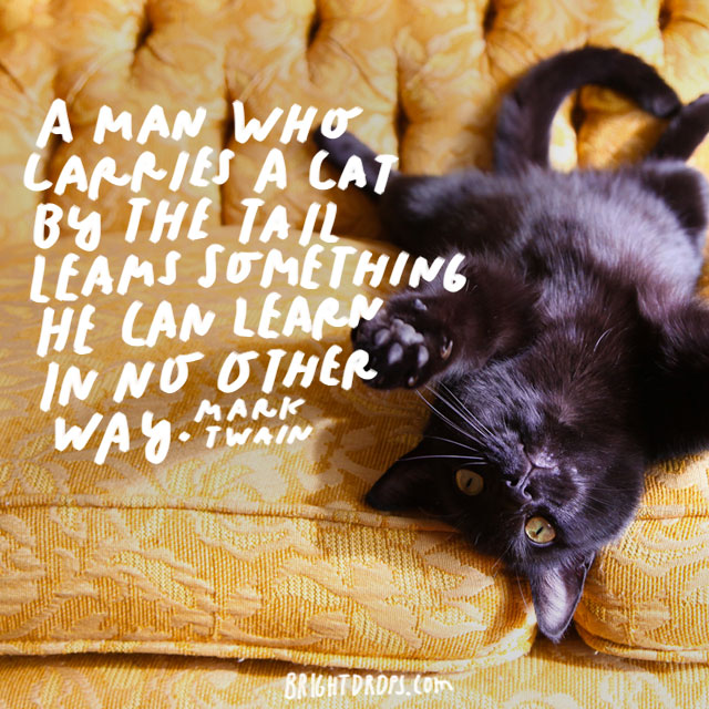 """A man who carries a cat by the tail learns something he can learn in no other way."" - Mark Twain"