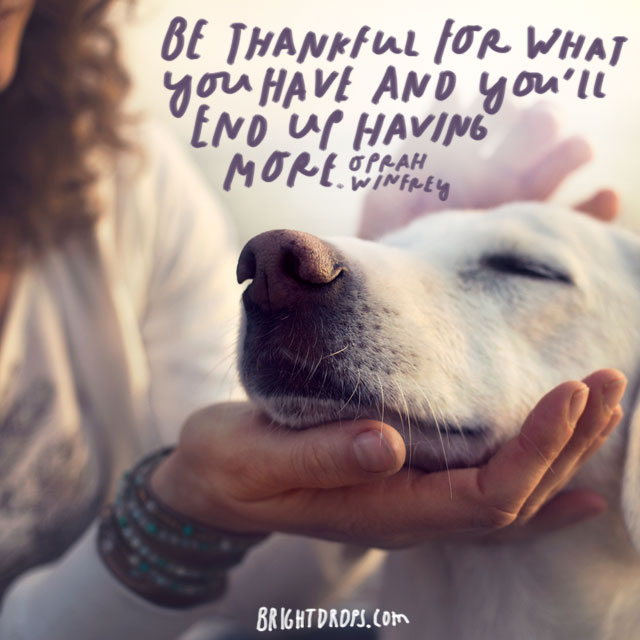 """""""Be thankful for what you have and you'll end up having more."""" - Oprah Winfrey"""
