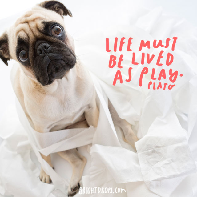 """Life must be lived as play."" – Plato"