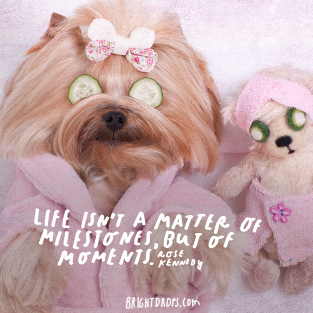 """Life isn't a matter of milestones, but of moments."" – Rose Kennedy"