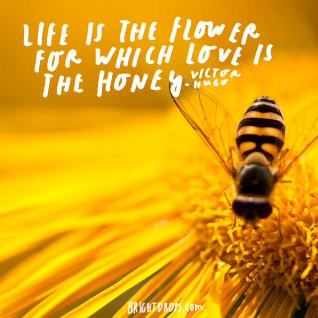 """Life is the flower for which love is the honey."" – Victor Hugo"
