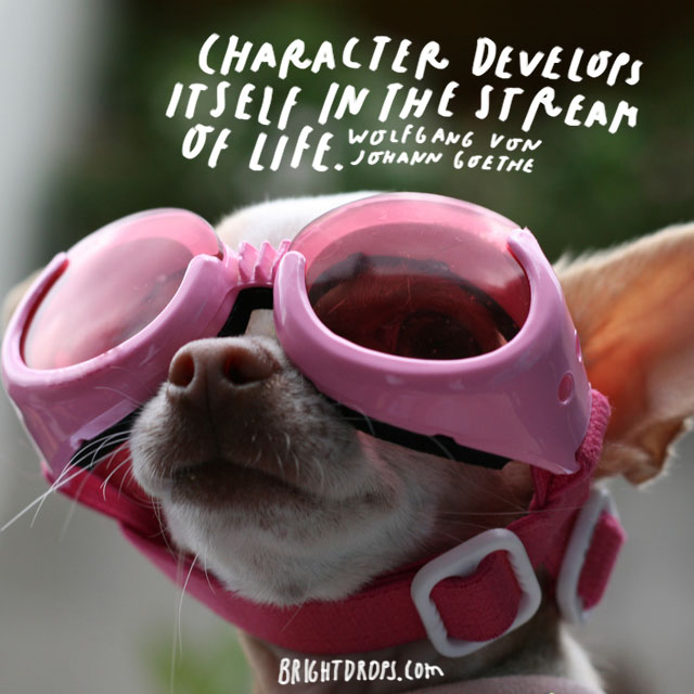 """Character develops itself in the stream of life."" – Wolfgang Von Johann Goethe"