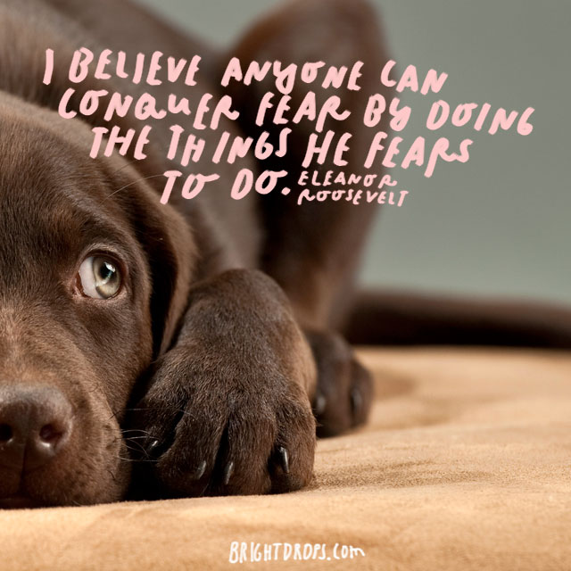 """I believe anyone can conquer fear by doing the things he fears to do."" – Eleanor Roosevelt"