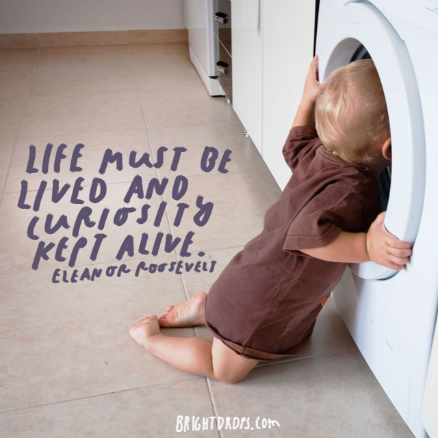 """Life must be lived and curiosity kept alive."" – Eleanor Roosevelt"