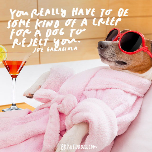 """""""You really have to be some kind of a creep for a dog to reject you."""" – Joe Garagiola"""