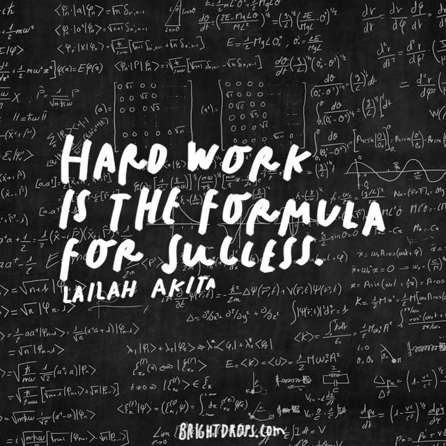 """Hard work is the formula for success."" – Lailah Akita"