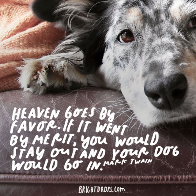 """""""Heaven goes by favor. If it went by merit, you would stay out and your dog would go in."""" – Mark Twain"""
