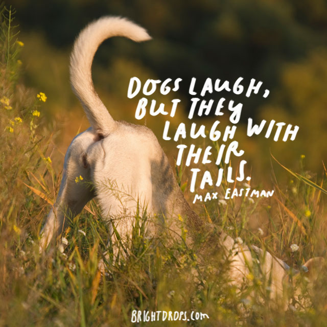"""""""Dogs laugh, but they laugh with their tails."""" – Max Eastman"""
